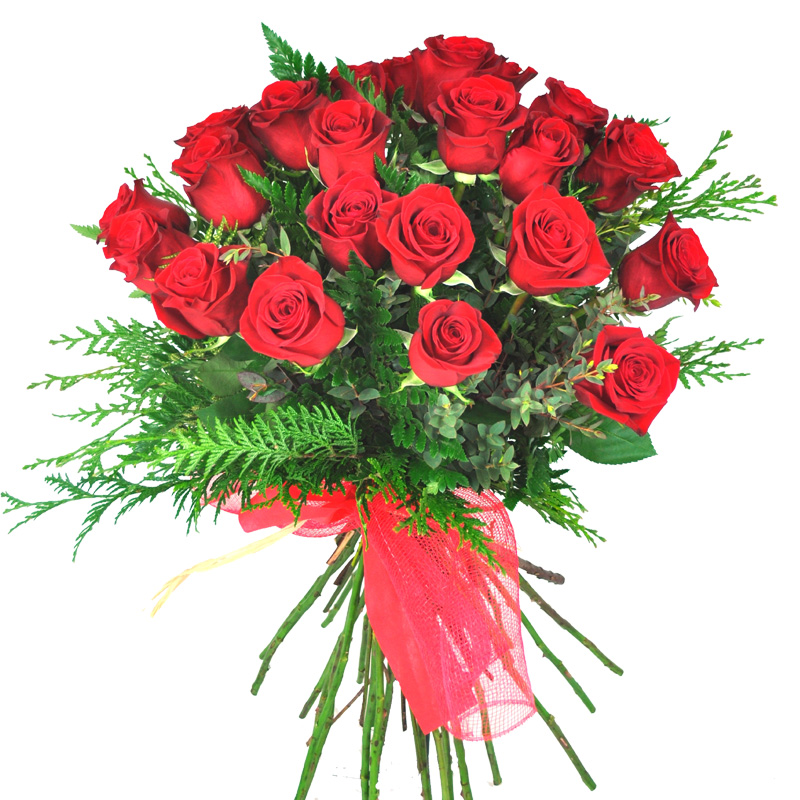 17 red roses to Barcelona.