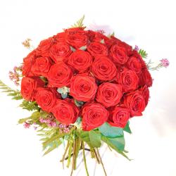 60 Red Roses Long Stem (70cm)