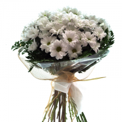 WHITE DAISIES BOUQUET