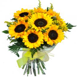 Sunflowers Barcelona