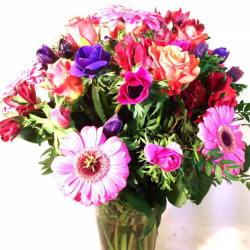Vase of gerberas and anemones