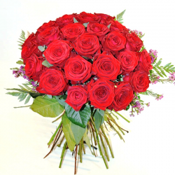 35 Rosas Rojas Tallo Largo