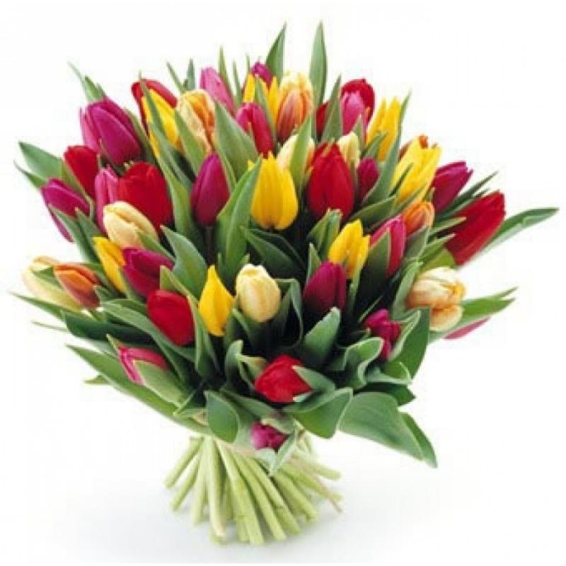 Bouquet 39 Tulips